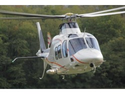 Helicopter tour at Bran and Peles Castles for 3