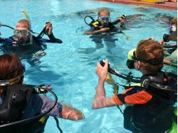 Scuba diving course in Bucharest