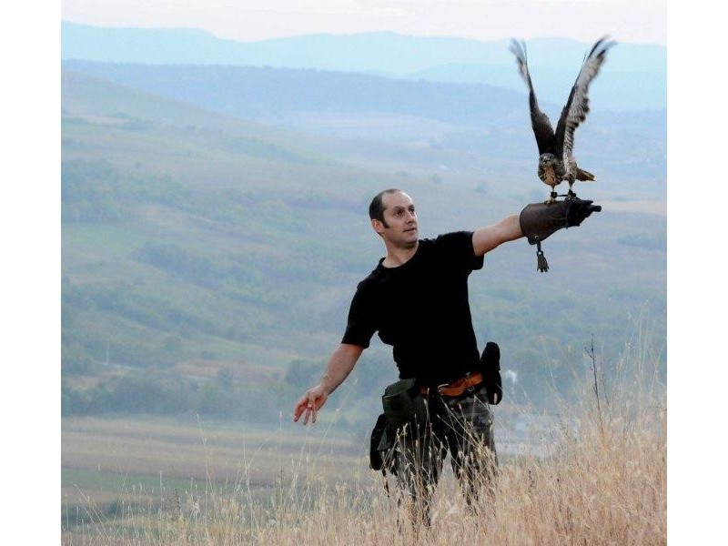 handling-birds-of-prey-lesson-in-sibiu